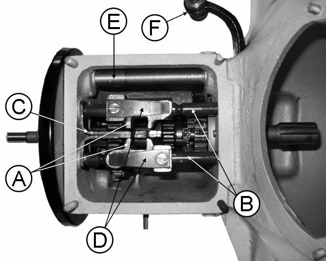 Boîte de vitesses coupe verticale de la boîte de vitesses